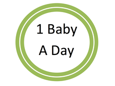 1 Baby A Day icon.png